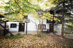 House Brestovitsa