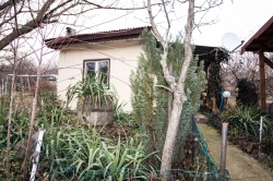 For Sale House Nikolovo