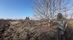 Plot of land Byala